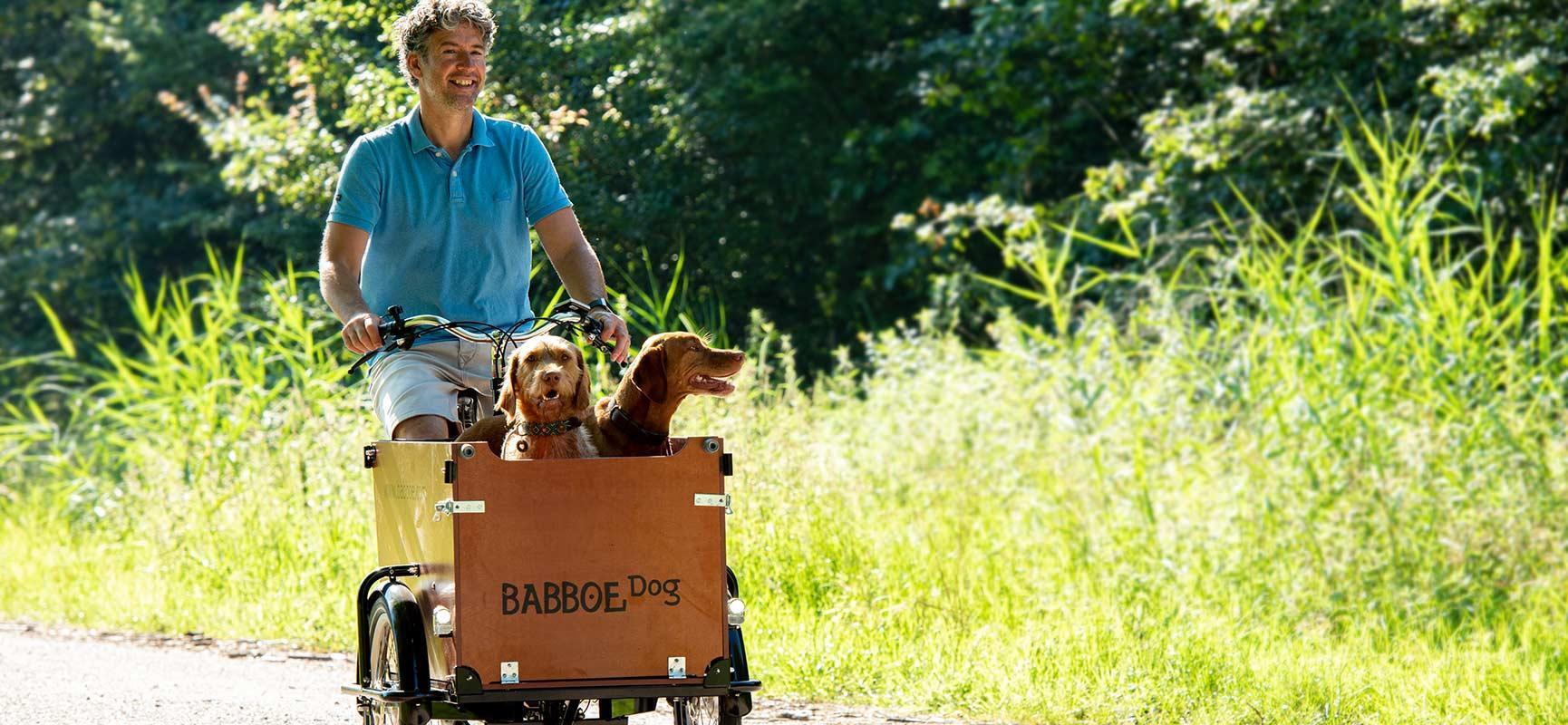 Fahrradfahren mit Hund: ein Riesenspaß