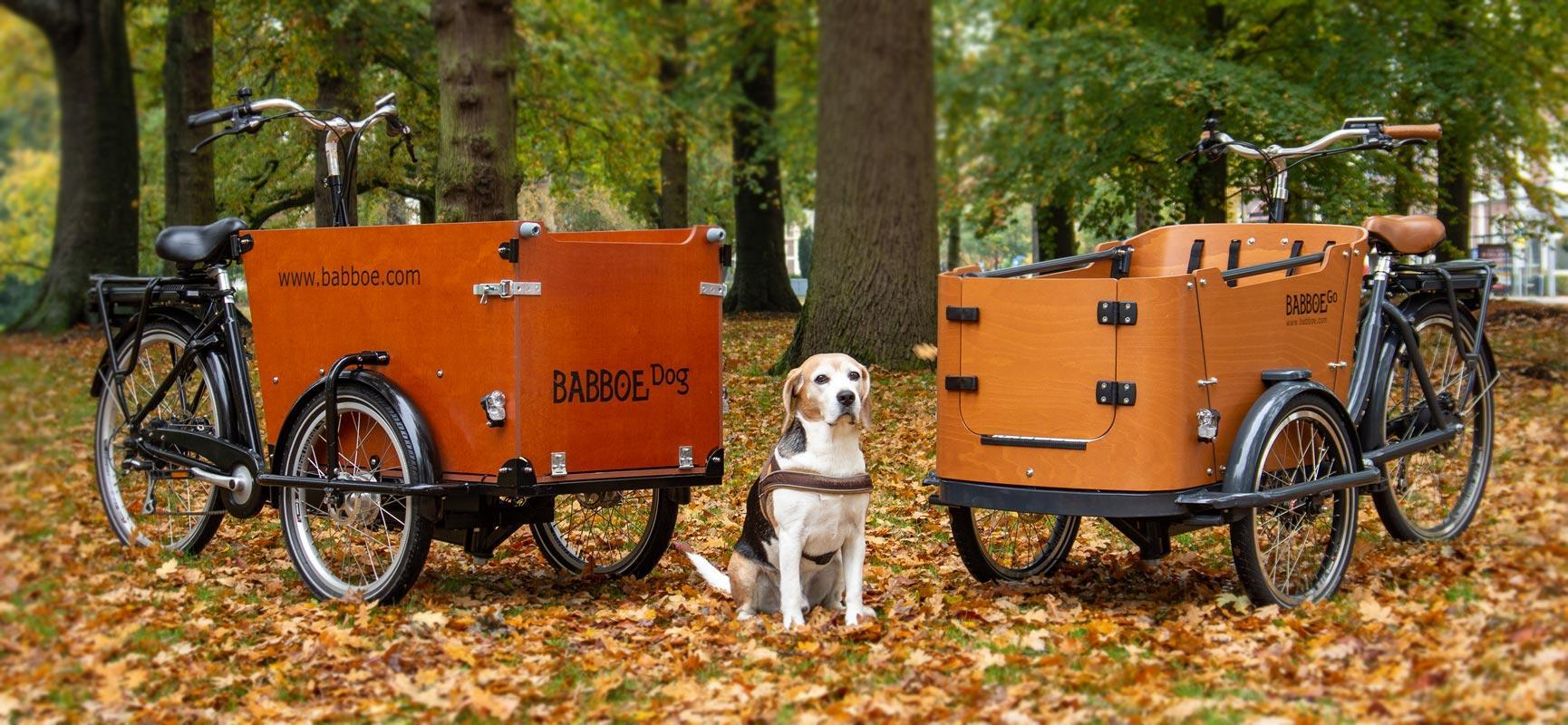 cargobike hund