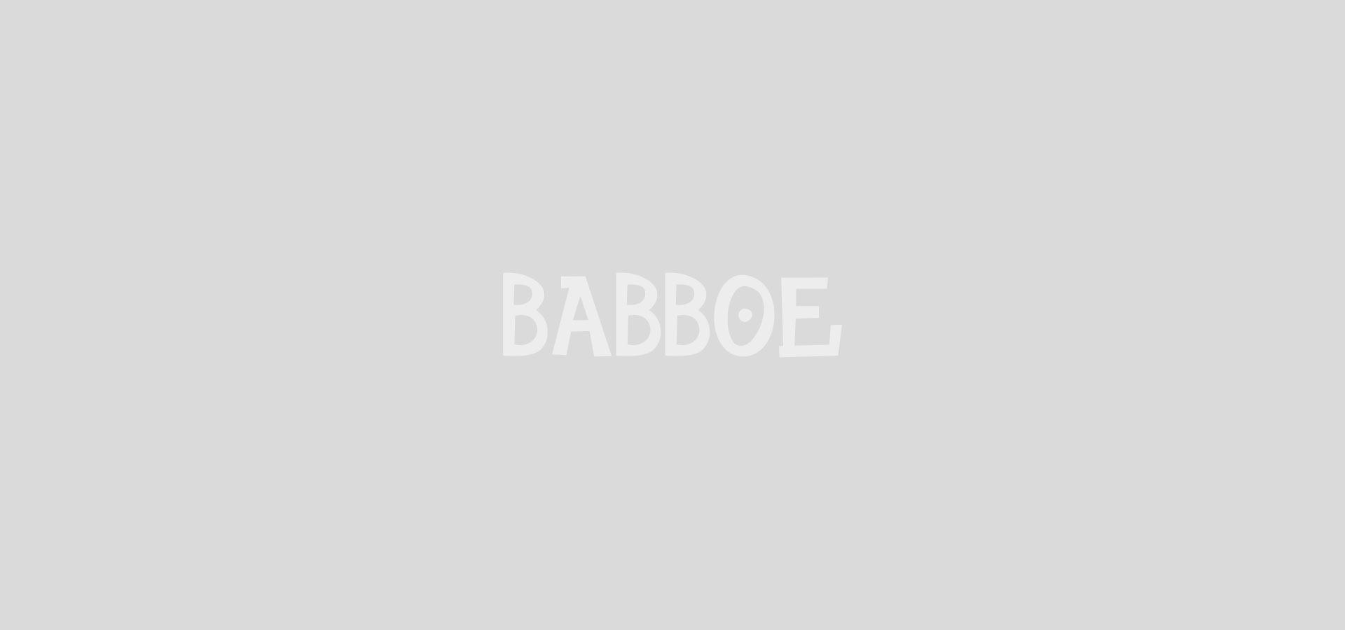 Babboe Max