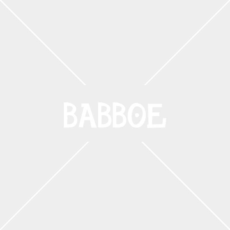 Hund Lili immer in Sicht im Babboe Dog-E